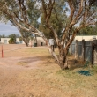 grassed camp sites with shade